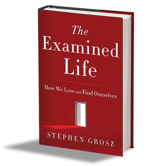 Stephen Grosz The Examined Life